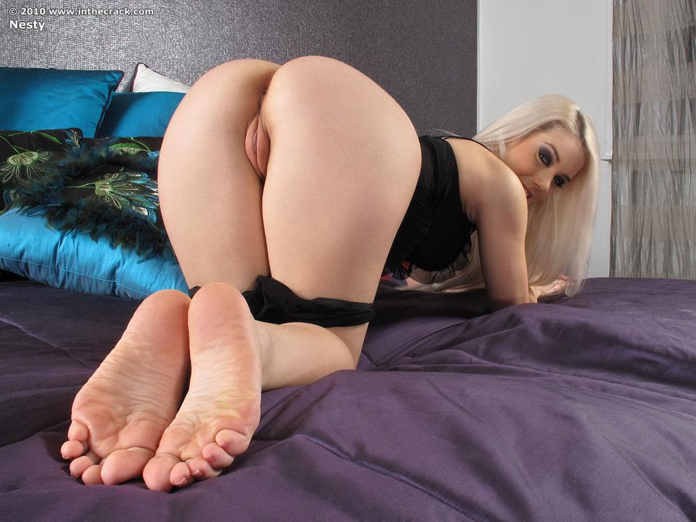 бархатние жопки порно фото